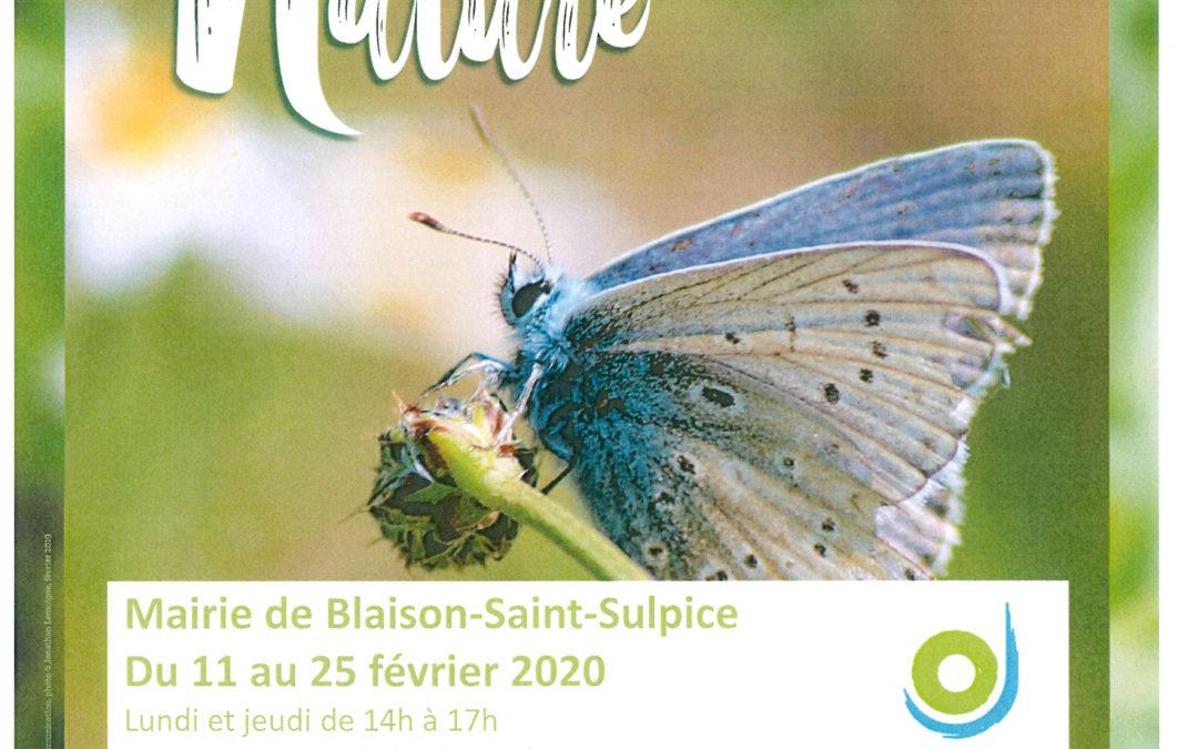 Exposition «Force de la nature»